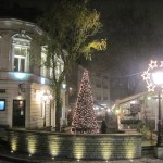 The Skadarska Street