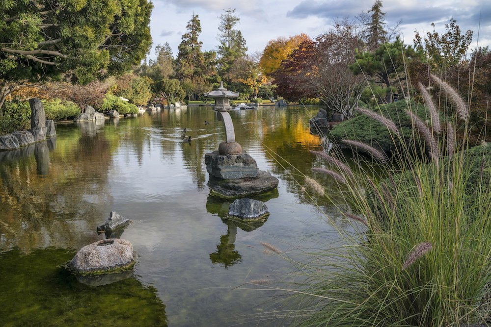View of the Japanese Friendship Garden
