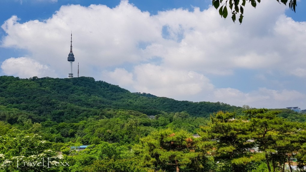 View of N Seoul Tower from Namsan Park - Korea hiking trails