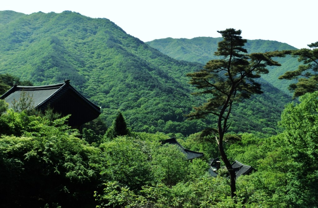 Jirisan National Park - Korea hiking trails