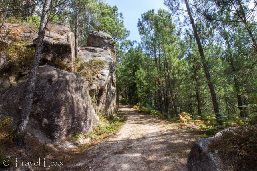 Pine forest and rock formations on the trail - Peneda-Gerês national park