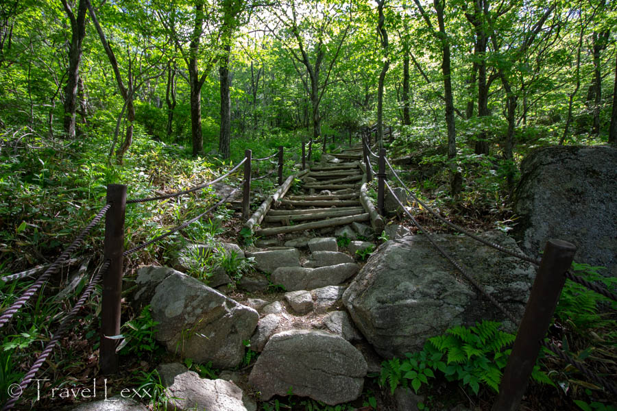 Log stairs in Sobaeksan National Park