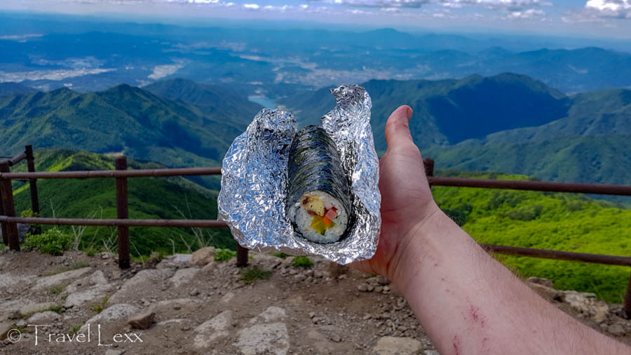 An outstretched hand holding a roll of gimbap against a backdrop of mountain scenery