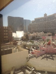 Flamingo View 2