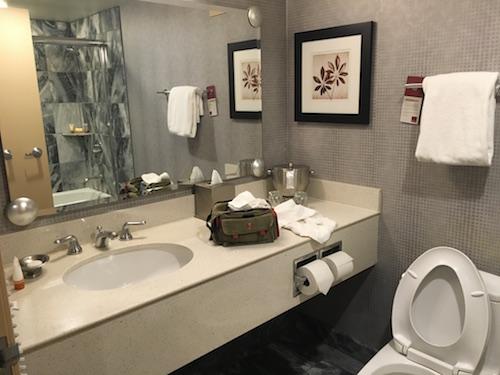Standard bathroom.