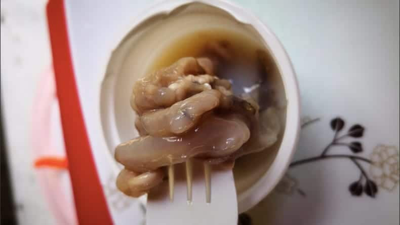 Tamilok is a delicacy in the Philippines of woodworm