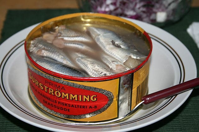 Surströmming Swedish Smelly Fish Delicacy