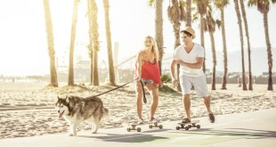 Couple having fun with their Husky dog. Skating in the seafront is one of the best things to do in Santa Monica, California.