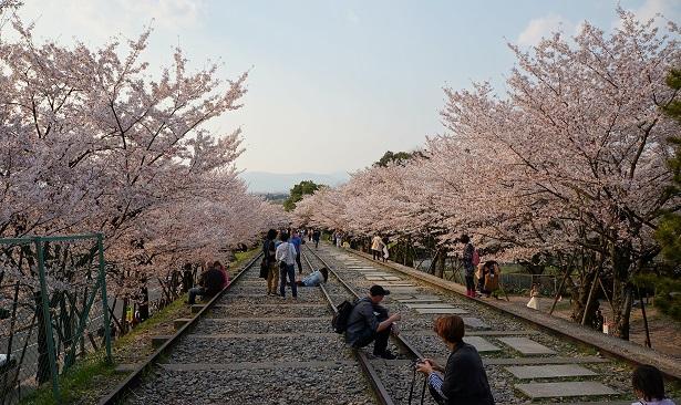 highlights kyoto (9)
