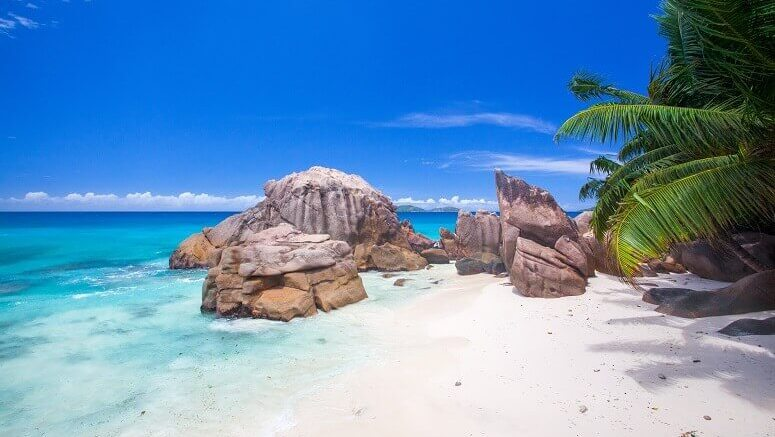 best things to do in the seychelles