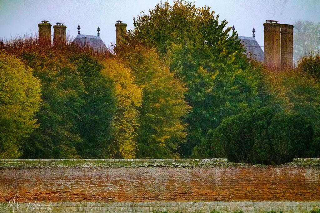 Hidden castle behind massive trees