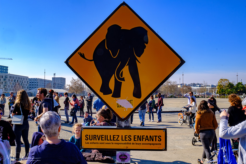 Elephant crossing warning sign in Nantes