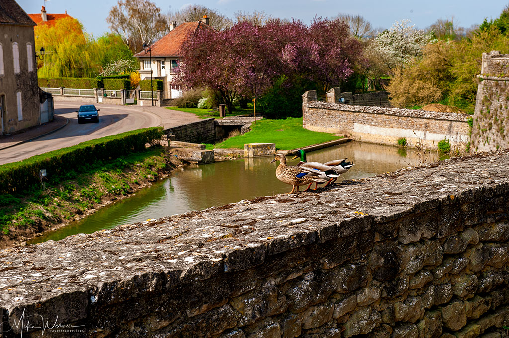 The view from the castle over the moat of the Epoisses castle in Burgundy
