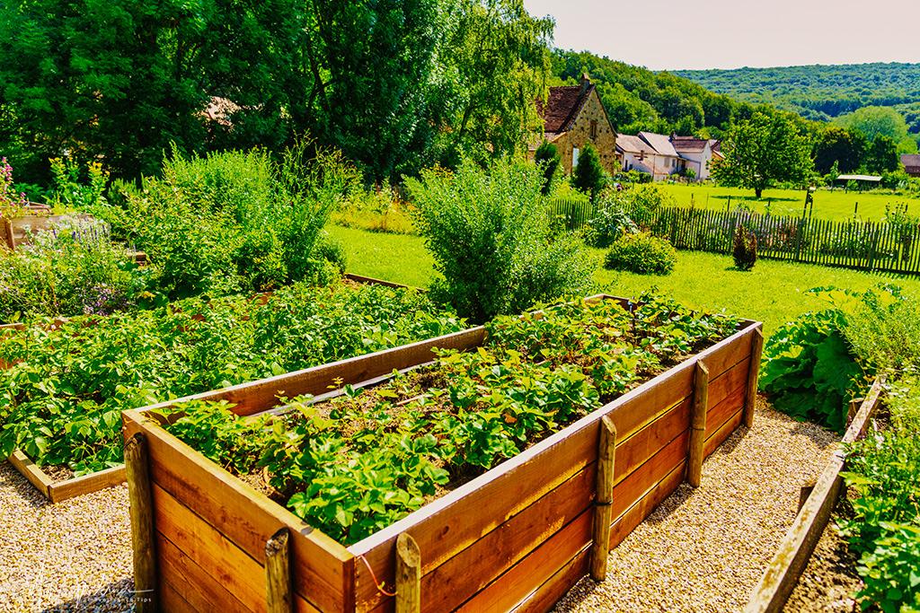 Chateau de Balleure medieval kitchen gardens