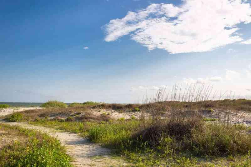 Dunes in Charleston, South Carolina