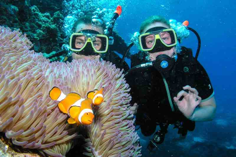 The best scuba diving on the great barrier reef travelfreak - Best place to dive the great barrier reef ...