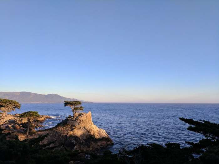 The Lone Cypress along 17 Mile Drive on a Pacific Coast Highway road trip