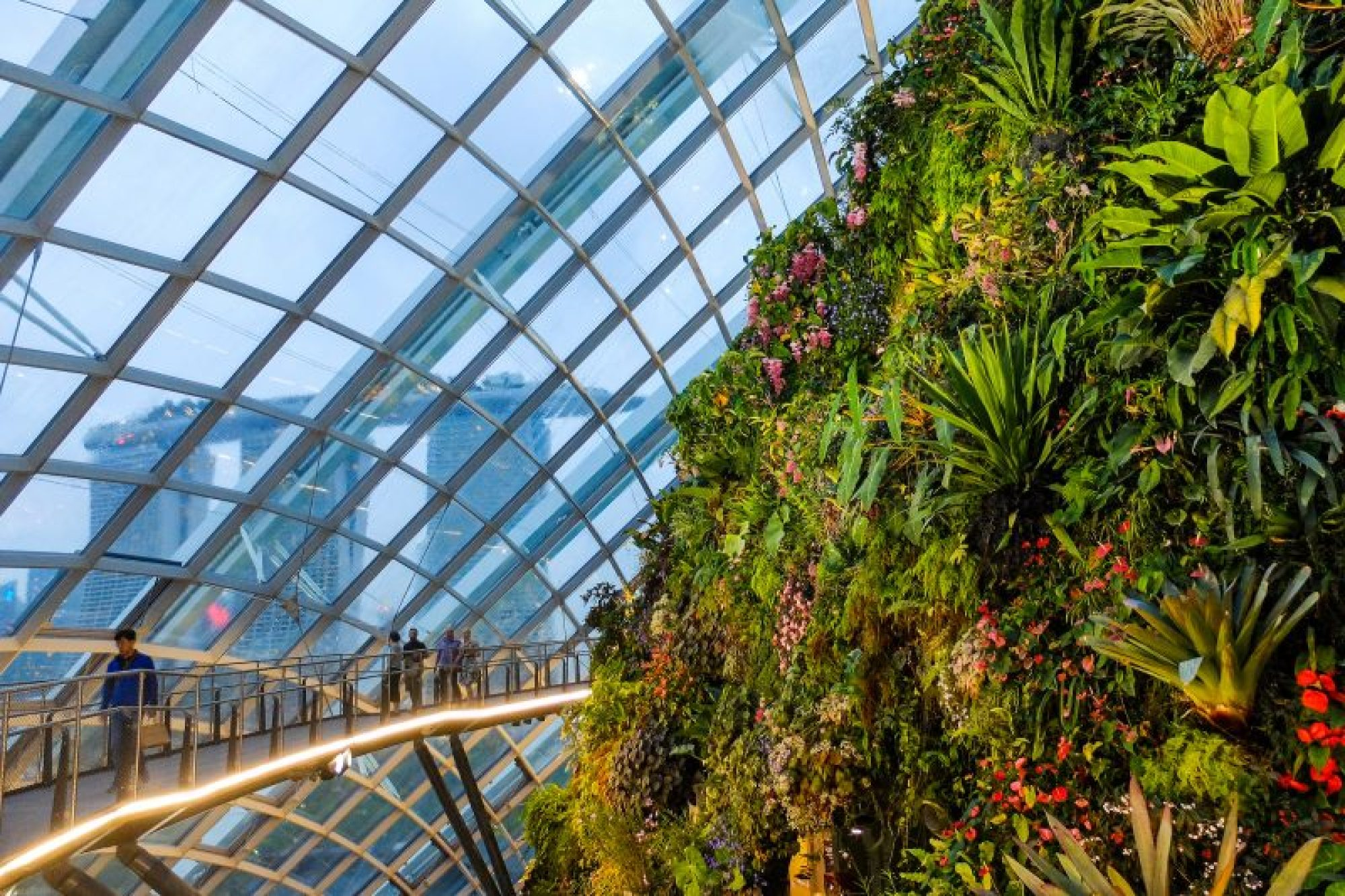 Gardens by the Bay, Cloud Forest
