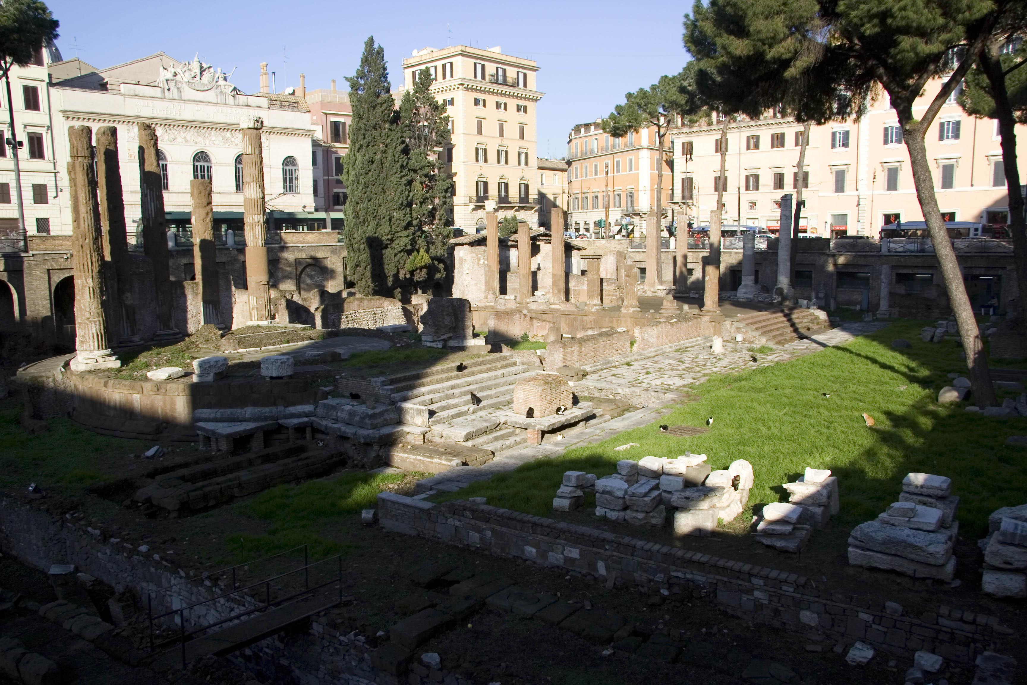 Area Sacra и кошки, которые помнят Цезаря