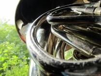 french-horn-8.jpg