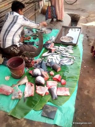 Fish Market Tour Kolkata