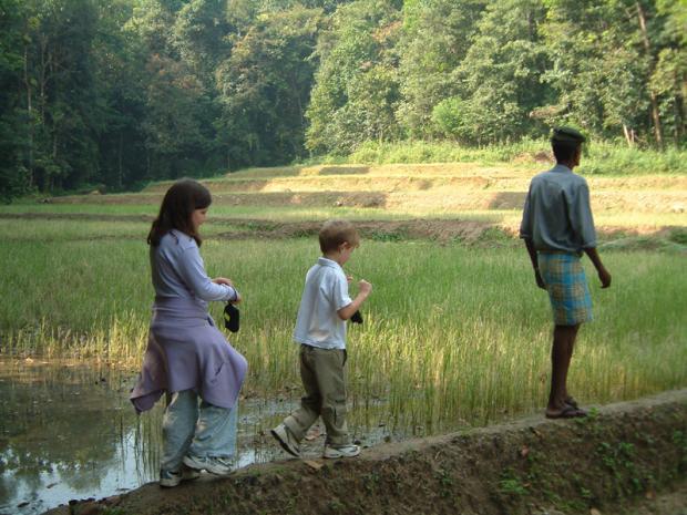 paddy-field-walk-sri