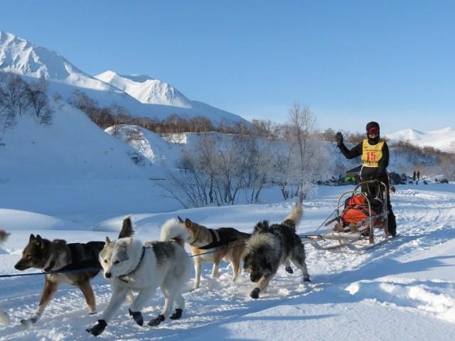 Vakantiehuis met hond: Dat willen we toch allemaal?