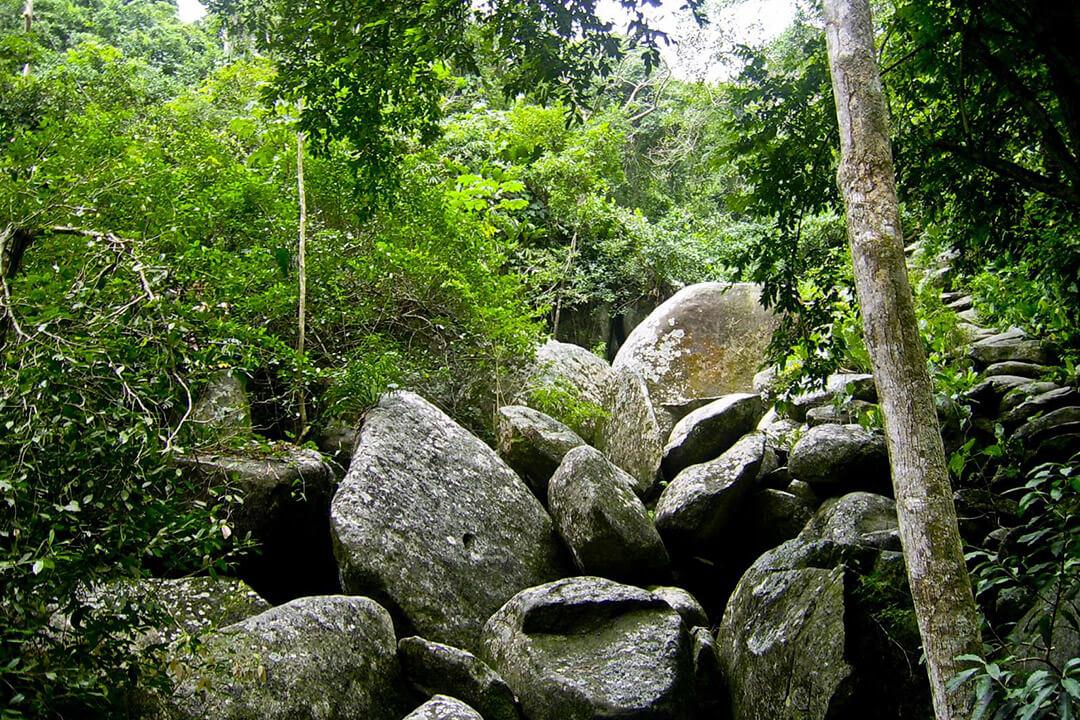 Hiking en el Parque Tayrona