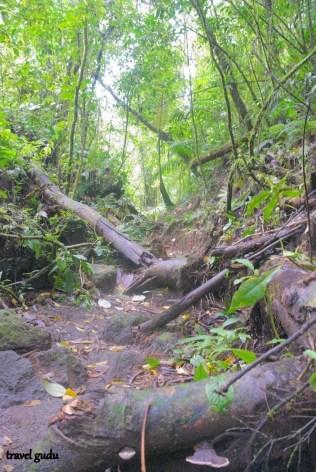 cerro chato (4)