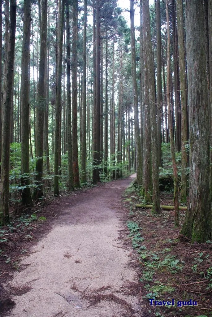 Giappone a piedi