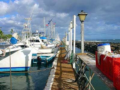 Lahaina Harbor West Shore Maui