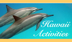 Hawaii Vacation Packages Multi Island Activities and Tours
