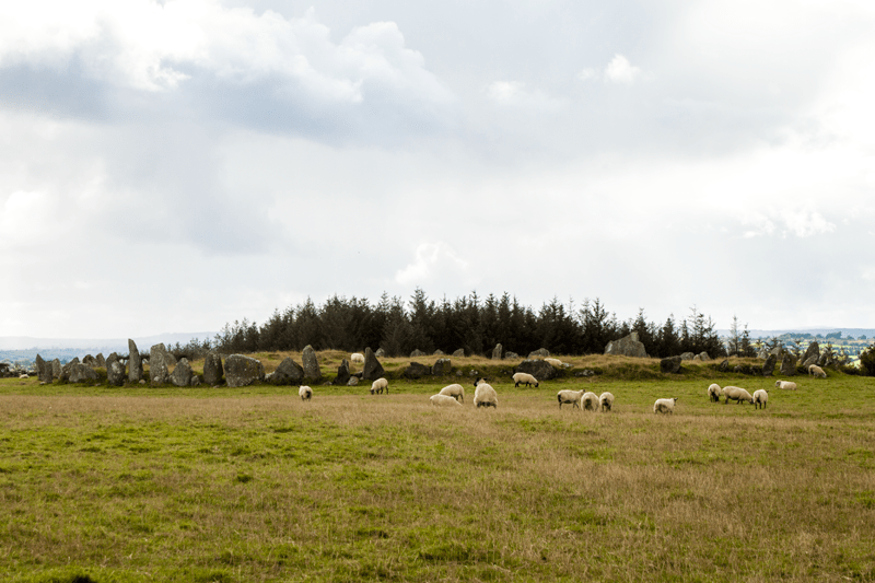 Beltany Stone Circle - County Donegal
