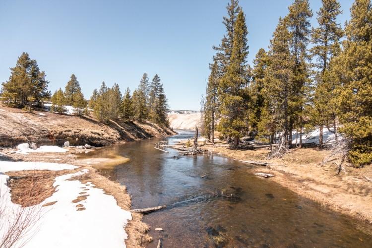 Yellowstone in April Upper Geyser Basin