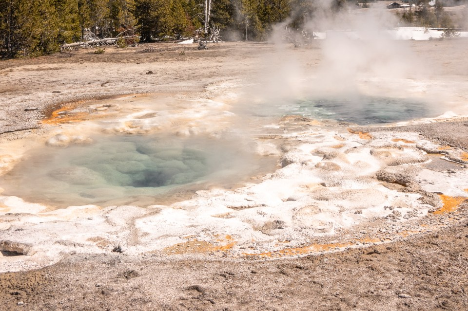 Yellowstone in April Upper Geyser Basin Spasmodic Geyser