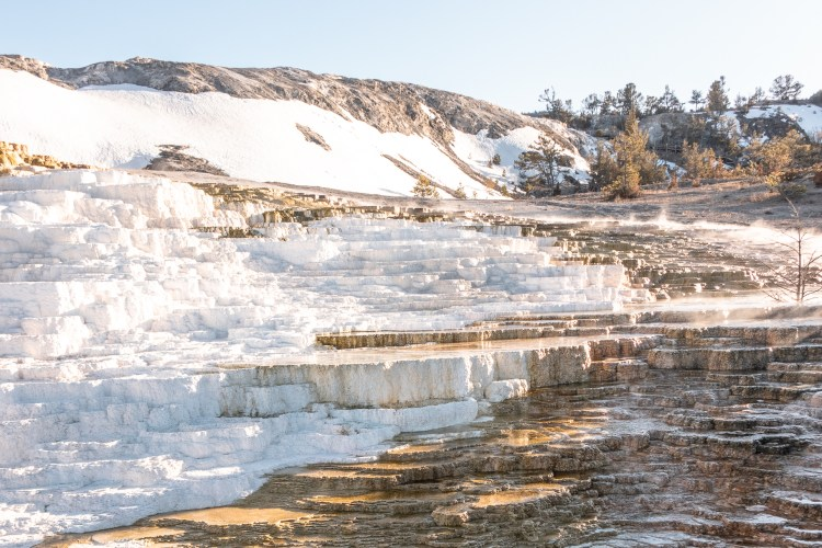 Yellowstone in April Mammoth Hot Springs