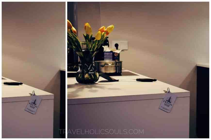 Suite Kitchen in Reykjavik