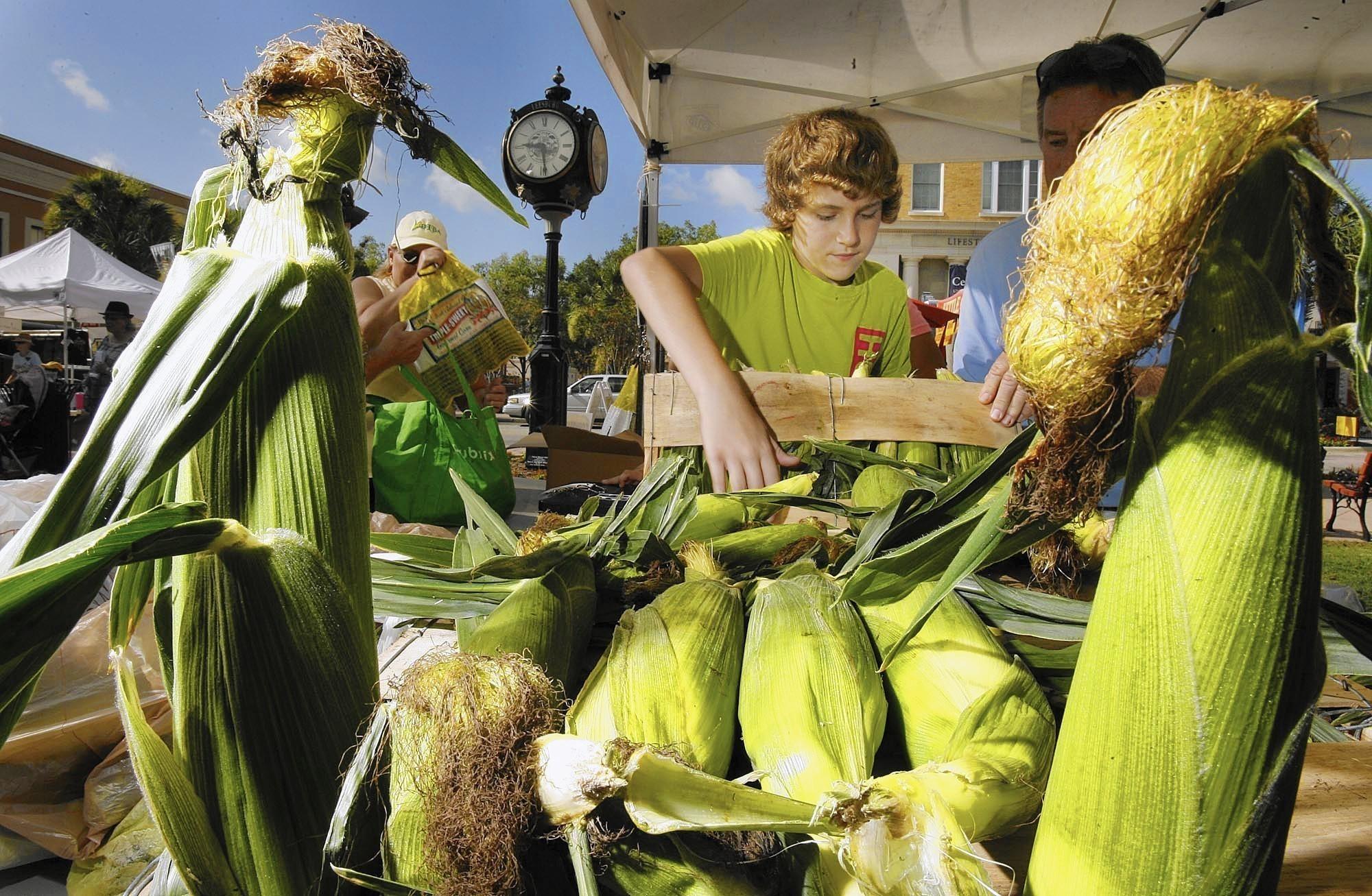 Fun Food Festivals In Florida Travel Hymns