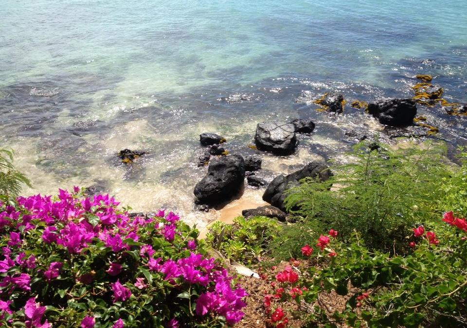 Finding Jobs in Maui