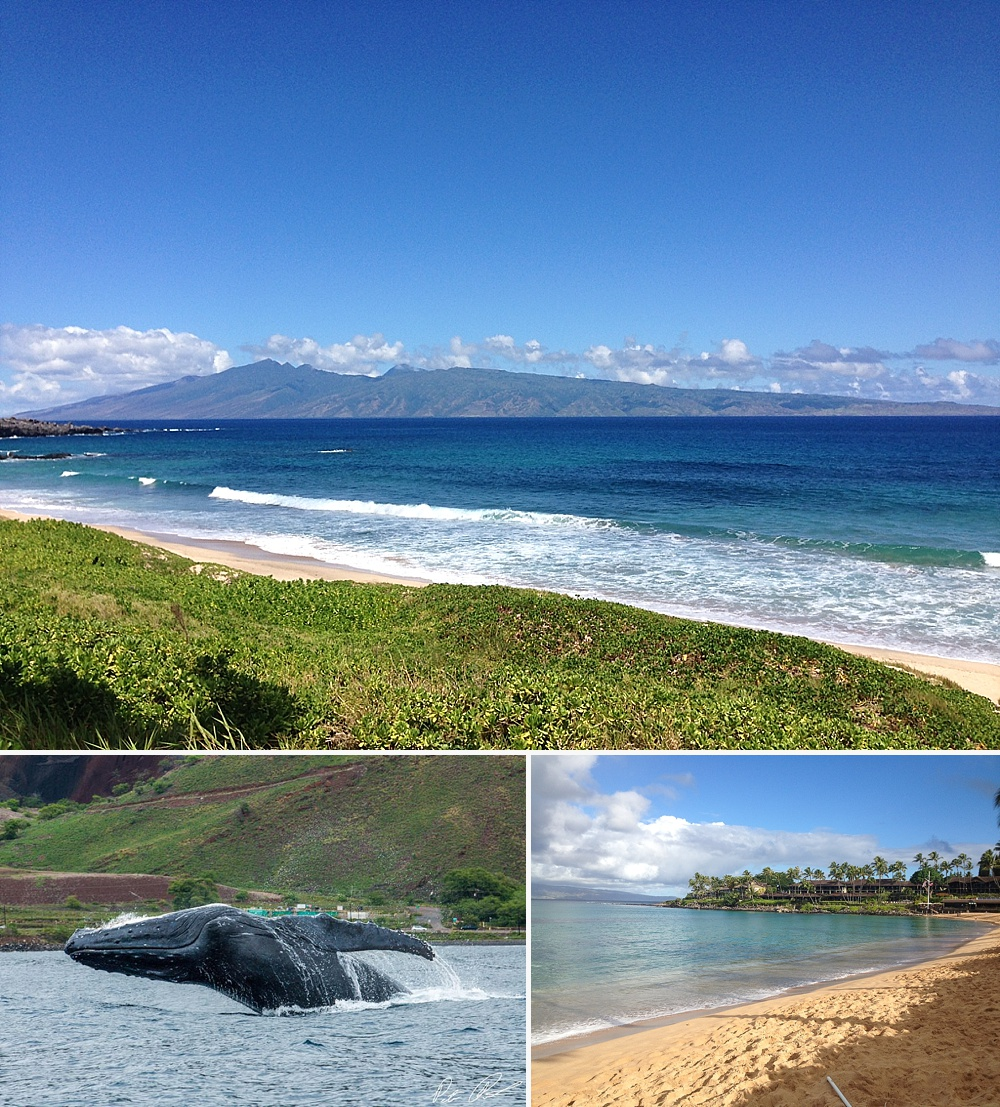 where do locals live in maui