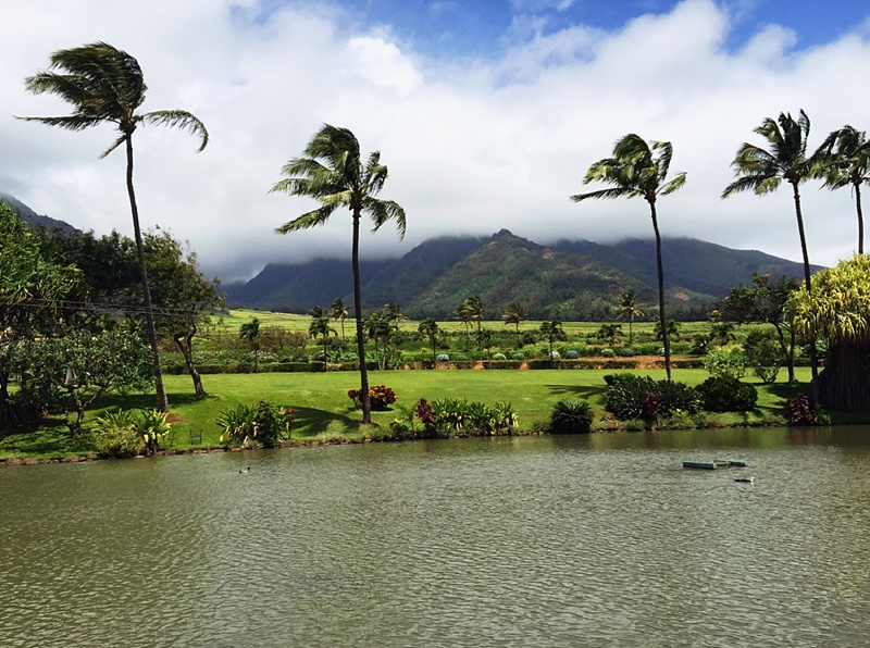 tips for moving to hawaii