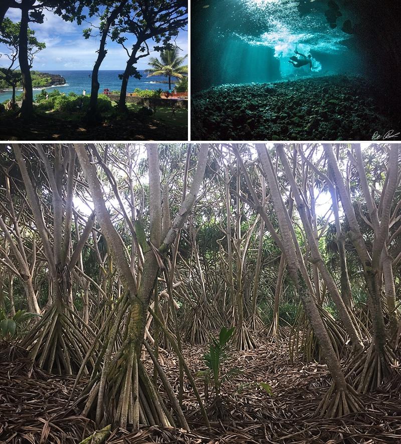 where to camp hana maui