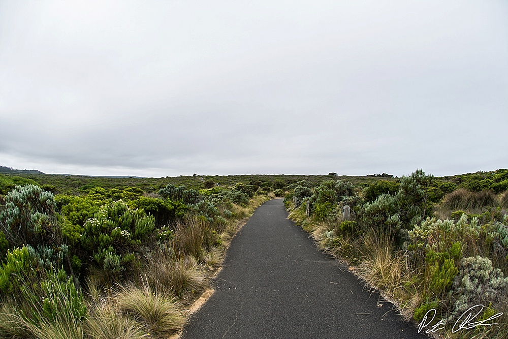 lookout points great ocean road