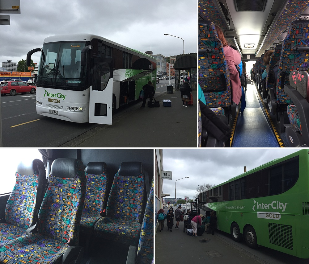 queenstown to dunedin bus