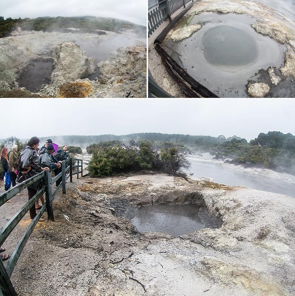 geothermal reserve walks new zealand