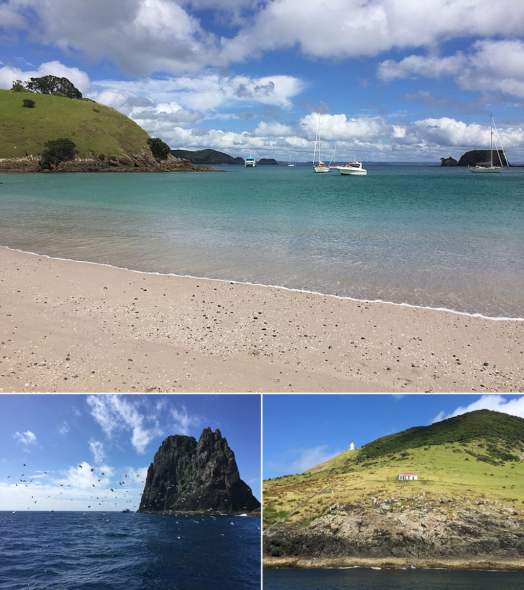 moving to new zealand travel blog