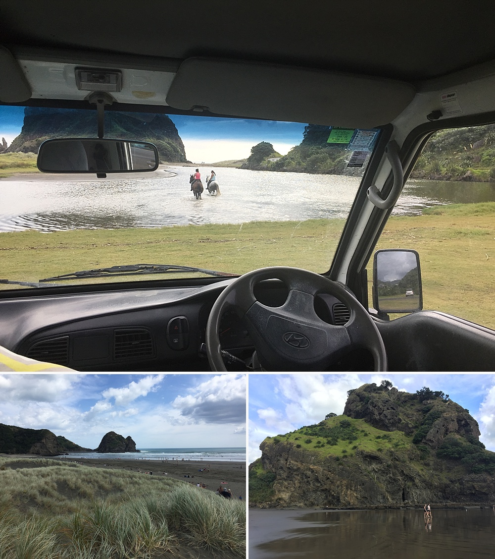 what is it like to live in new zealand