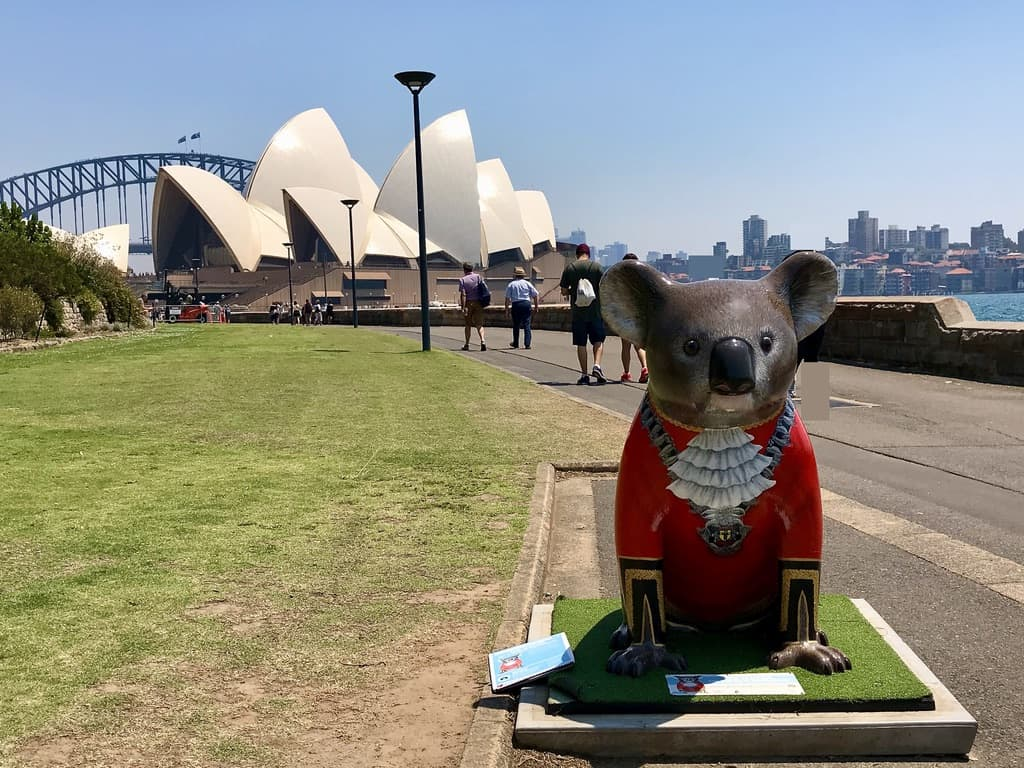 """""""The Mayor"""" koala statue with the Sydney Opera House and Harbour Bridge in background"""