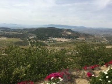 view from reagan library