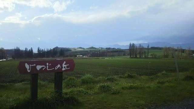 富良野のジンギスカンで有名なひつじの丘!
